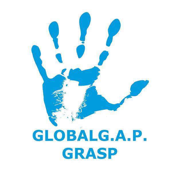 Global GAP GRASP